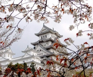 Все о загадочном мире Японии