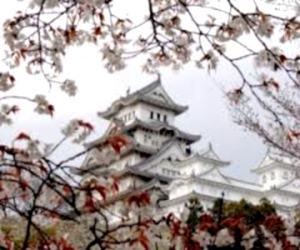 Эта удивительная и сказочная Япония