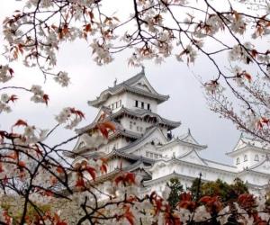 Чем уникален отдых в Японии?